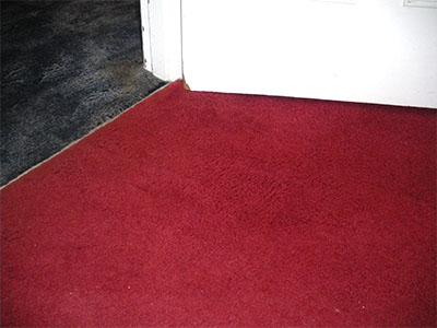 Clean carpet after photo bt Mr Clean, Sussex